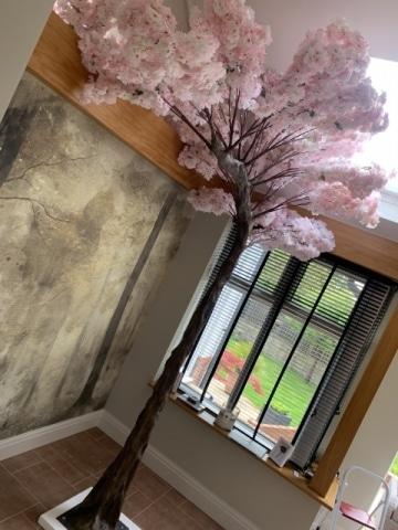 Blossom Canopy Trees Hire