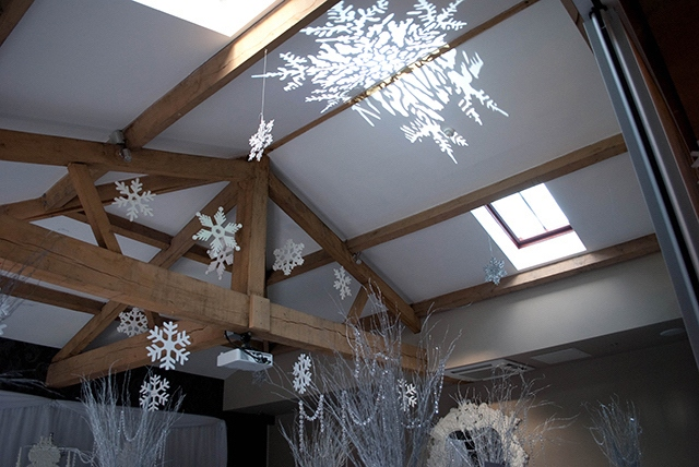 Snow Flake Projection