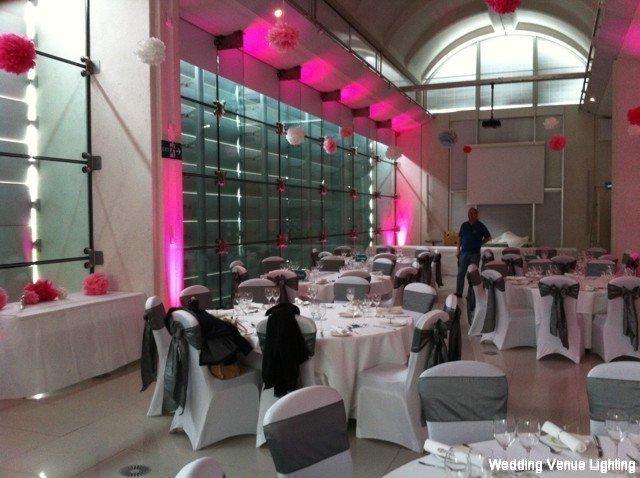 Millennium gallery uplighting black starcloth fairy lights millennium gallery wedding junglespirit Gallery