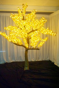 LED Tree Hire