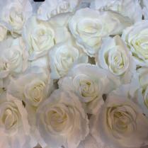 Rose Flower Wall
