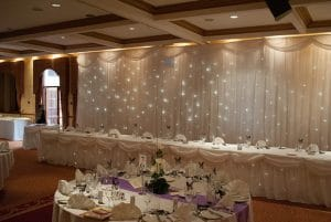 Starlight Backdrop, Table Skirt and Cake Table Skirt