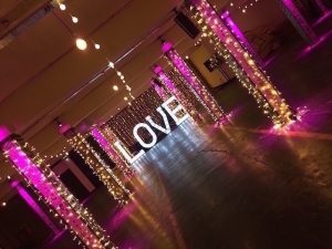 Fairy Lights Hire